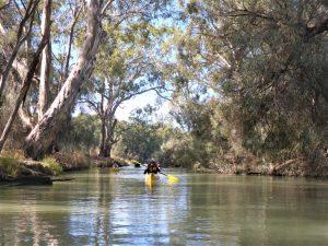Bulyong Creek Paddling Trails South Australia