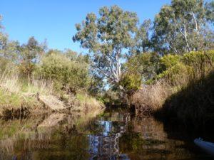 Inman-River-photo-courtesy-Libby-Richardson_43