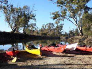 Kayaks Chowilla Paddling Trails South Australia