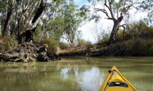 Moorundi-Creek-entrance-photo-courtesy-Meredith-Blesing-6