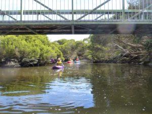 Paddlers-on-Hindmarsh-River-photo-courtesy-Libby-Richardson_32