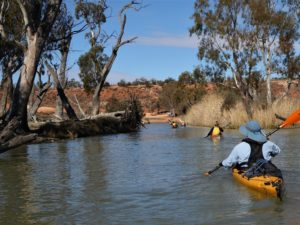 Returning to launch site Paddling Trails South Australia